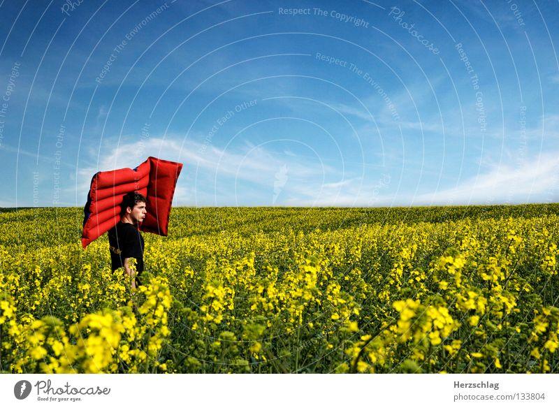 Dem Sommer entgegen Frau Himmel blau Sommer rot Freude Farbe gelb Wärme Glück Zufriedenheit Physik heiß Freibad Luftmatratze Rapsfeld
