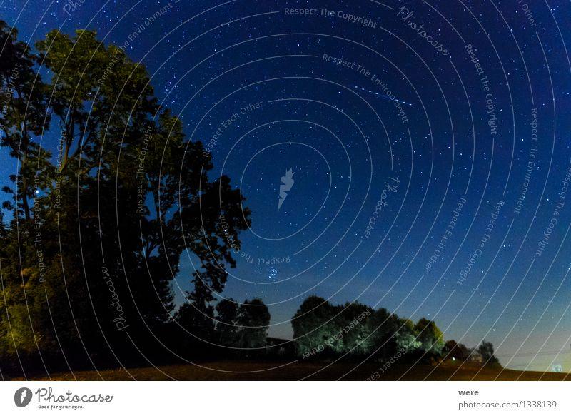 Perseiden Umwelt Natur Landschaft Himmel Nachthimmel Stern Observatorium leuchten gigantisch groß Unendlichkeit Astronaut Astronomie Milchstrasse Raumflug
