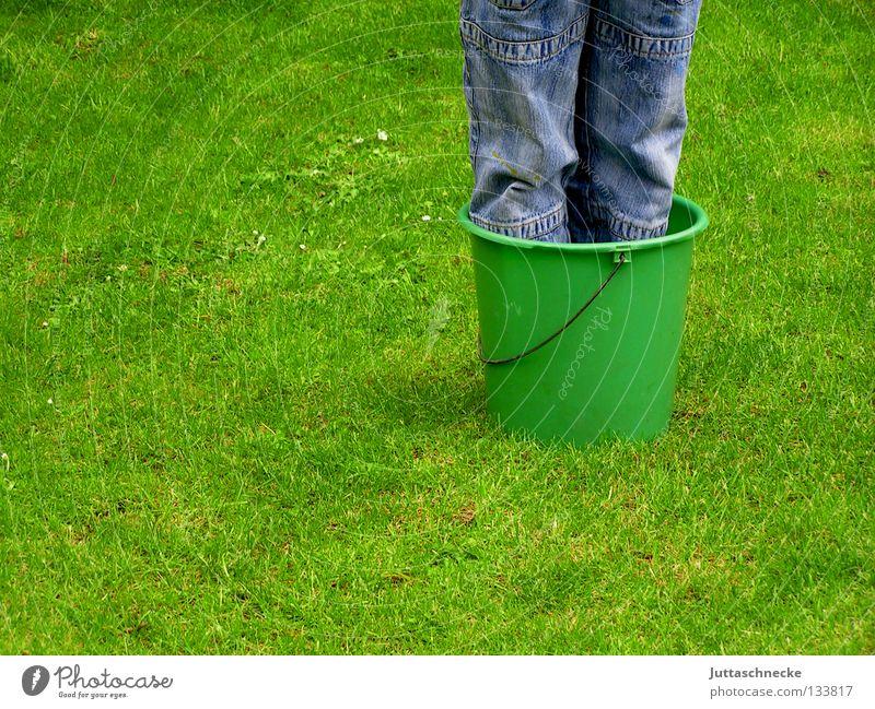 Topfpflanze winterhart Kind grün blau Freude Sommer Wiese Junge Gras Garten Frühling Beine Park lustig Wachstum Rasen Jeanshose