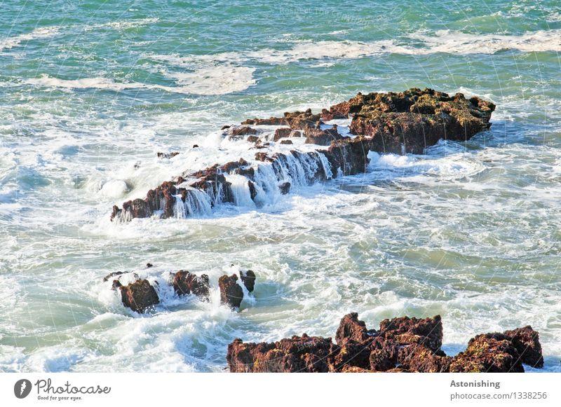 Flut Umwelt Natur Landschaft Wasser Wassertropfen Sommer Wetter Schönes Wetter Wärme Felsen Wellen Küste Bucht Meer Atlantik Insel Essaouira Marokko Stein blau