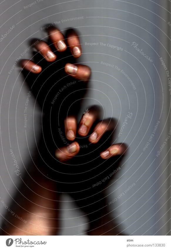 touch 3 Hand berühren Streicheln ruhen ruhig liegen grau Finger edel erfassen sensibel streichen verschwimmen Gefühle Fingerkuppe Fingerabdruck zart