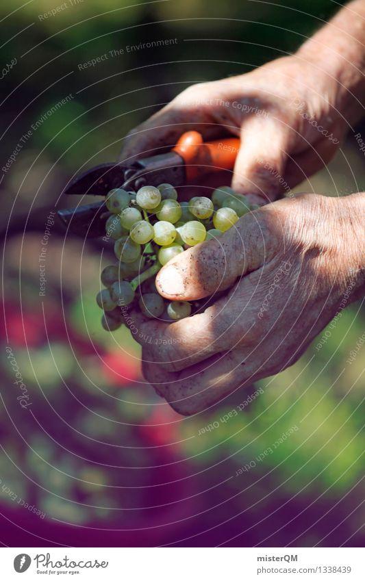Weinlese II Kunst Zufriedenheit ästhetisch Wein Wein Ernte Kunstwerk Weinlese Weinberg Weinbau Weinflasche Weintrauben Weinblatt Weingut Erntehelfer