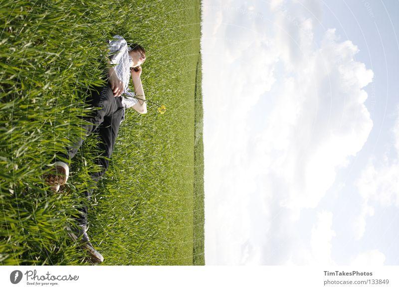 freedom 4 Mensch Himmel blau grün Blume Freude Wolken gelb Freiheit Gras T-Shirt Jeanshose Hemd Stock Image Bildbearbeitung