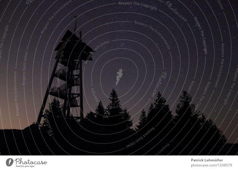 Sternenhimmel auf dem Schauinsland Ferien & Urlaub & Reisen Tourismus Landwirtschaft Forstwirtschaft Architektur Umwelt Natur Landschaft Nachthimmel Sommer Baum