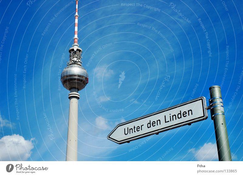 Preußenspargel Berlin Aussicht Turm Berliner Fernsehturm Hauptstadt Schilder & Markierungen Straßennamenschild Linde Funkturm