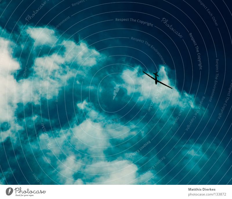 Flegelsieger Himmel Natur blau grün Sommer Wasser weiß Sonne Meer Wolken Freude Ferne Umwelt Hintergrundbild Sport Freiheit