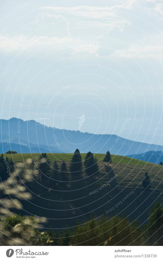 Get free Umwelt Natur Landschaft Wolken Sonnenlicht Schönes Wetter Pflanze Baum Wiese Wald Hügel Berge u. Gebirge Gipfel blau grün Schauinsland Schwarzwald