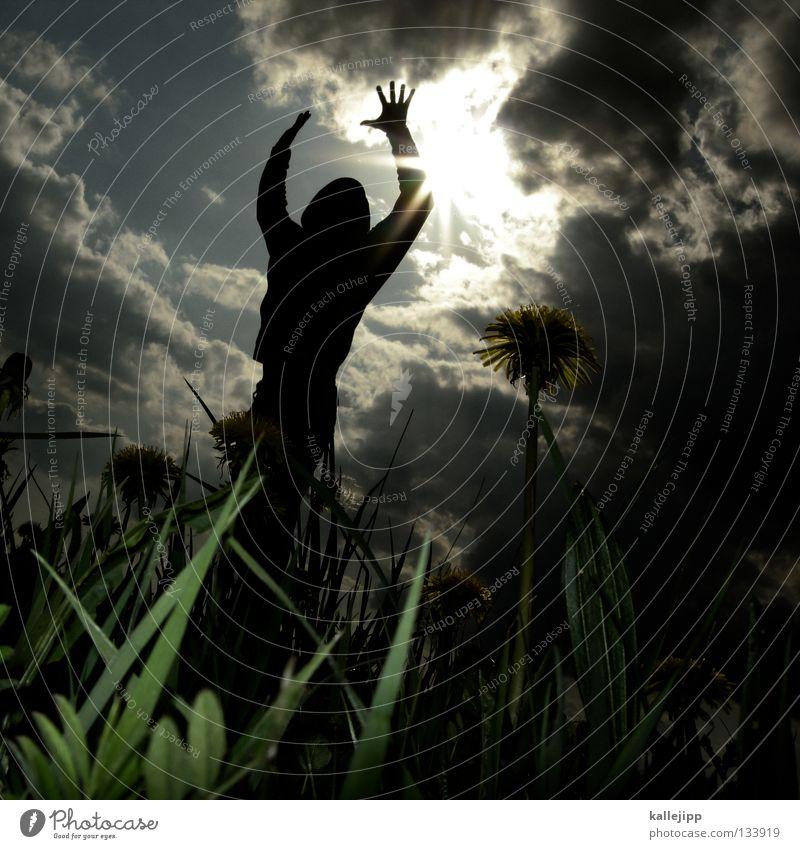 schwarzer tod Mensch Mann Pflanze Sonne Sommer Wolken Landschaft Tod Wiese Gras Frühling Religion & Glaube springen Wachstum bedrohlich Rasen