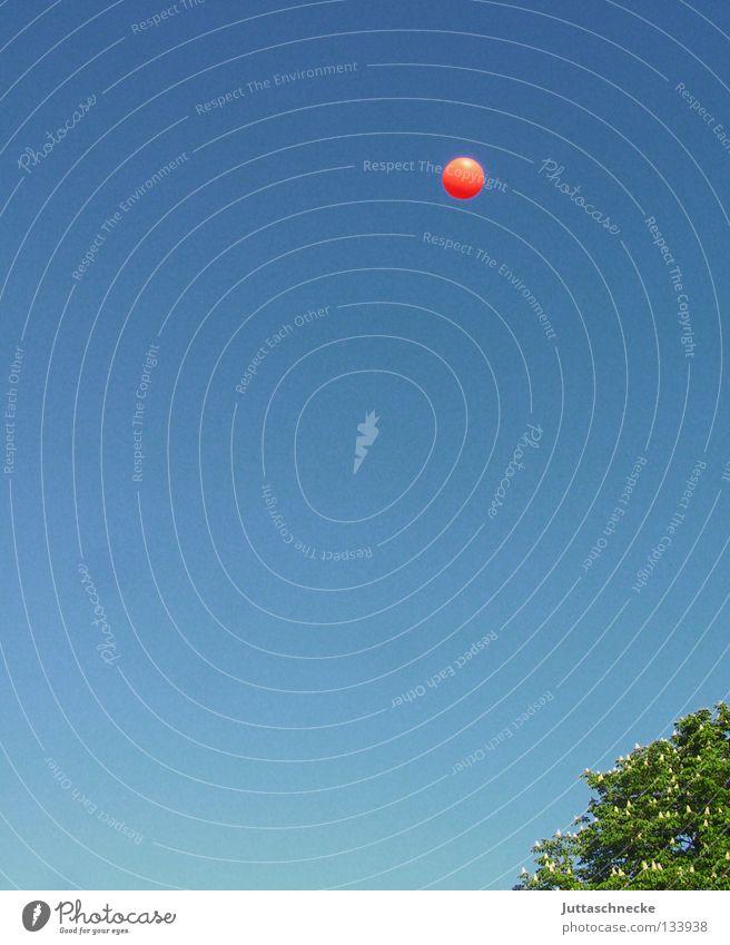 Überflieger Himmel blau grün Baum Freude Spielen oben Freiheit rosa fliegen hoch frei Ball werfen schießen Ballsport