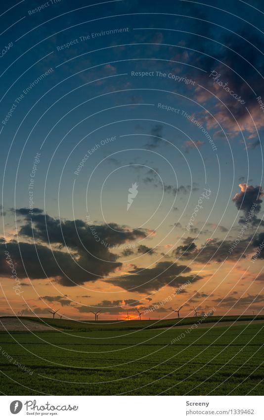 Dämmerung Natur Landschaft Pflanze Himmel Wolken Sonnenaufgang Sonnenuntergang Sommer Schönes Wetter Feld blau grün orange ruhig Windkraftanlage Ferne Farbfoto