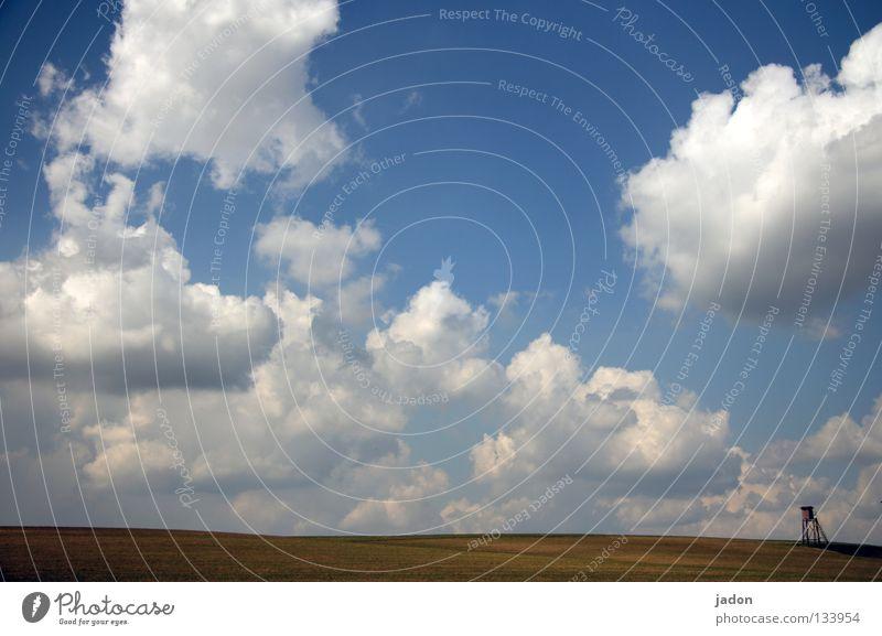 Wolkenkuckucksheim Himmel blau weiß ruhig Einsamkeit Ferne Wiese Landschaft springen Frühling träumen Horizont Raum Feld Hintergrundbild