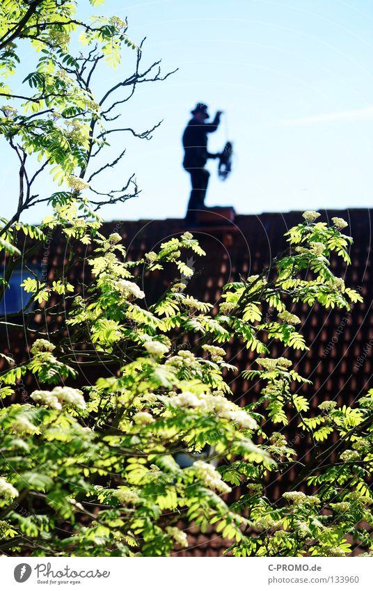 Trallala der Schornsteinfeger ist da I Dach Reinigen Zufriedenheit Baum Blatt Fenster Dachziegel Vogelbeerbaum Vogelbeeren Handwerk Heizkörper Glück Hut