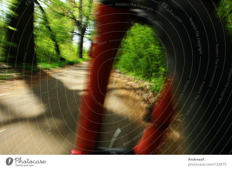 Mountainbiking Motorradfahren Fahrrad Fahrradfahren Fahrradtour Fahrradweg Felge Gabel Geschwindigkeit Bewegung Fußweg Mobilität Radrennen Schönes Wetter