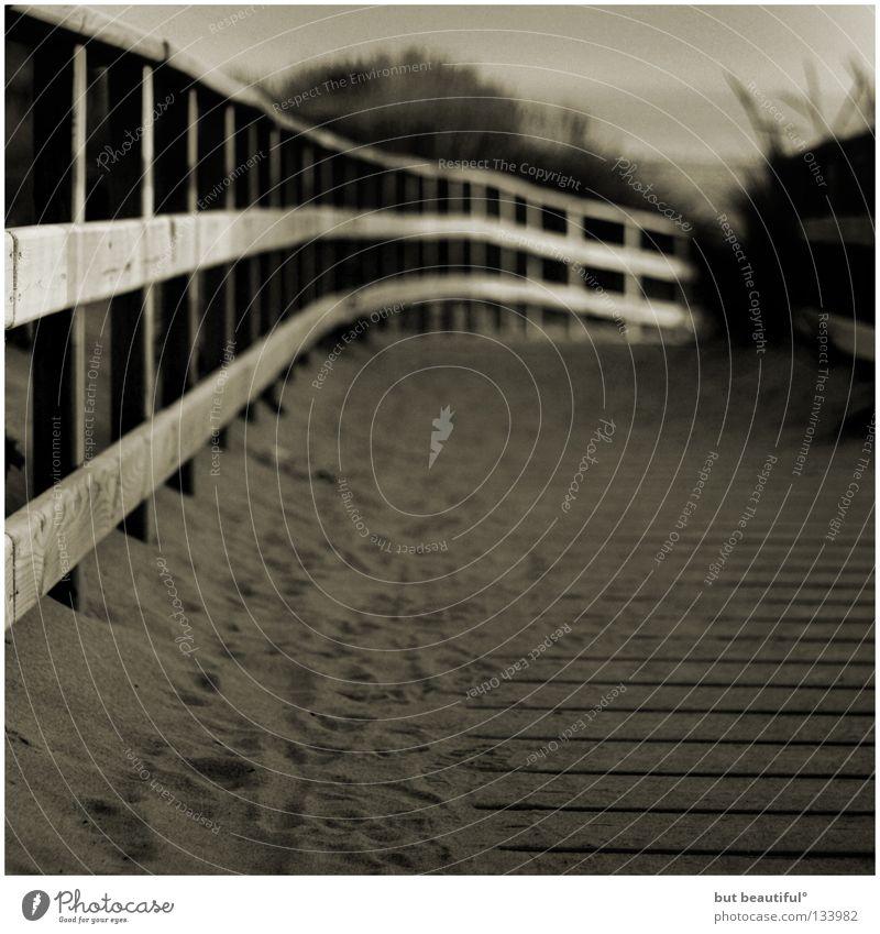 grey way to beach° Strand Meer Sommer Spanien Fußspur Schwarzweißfoto Küste Sand Warmer Sand Holzweg