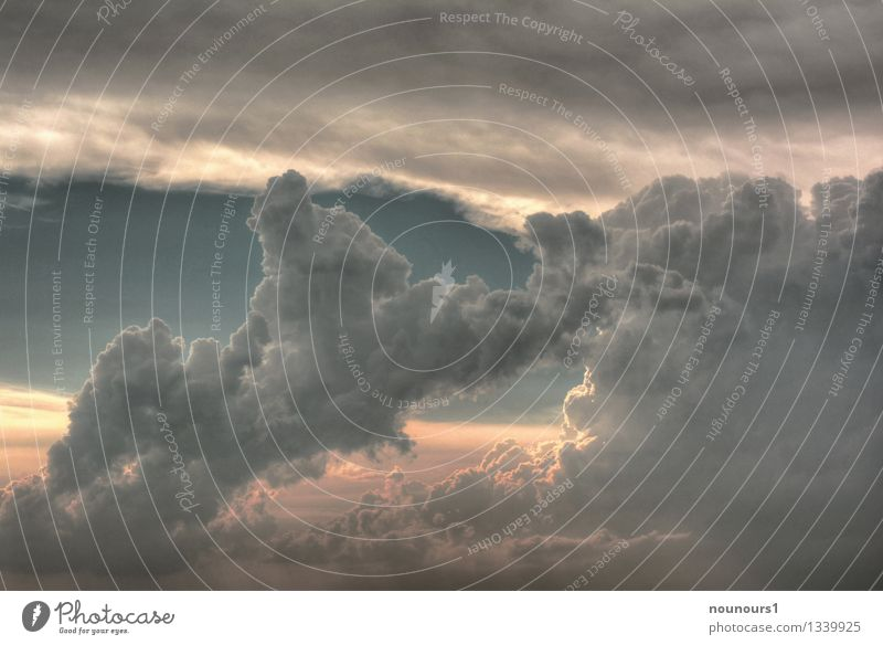 Wolkentürme Umwelt Natur Himmel Gewitterwolken Sonnenaufgang Sonnenuntergang Wetter Unwetter Wind Sturm bedrohlich Coolness dunkel fantastisch gigantisch grau