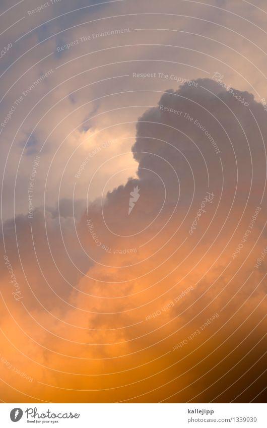 made in heaven Umwelt Natur Wolken Gewitterwolken Sonne Sonnenlicht Klima Unwetter Sturm Regen grau orange Religion & Glaube Gott Christentum Macht Farbfoto