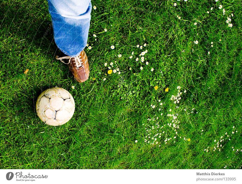 Falsche Ausrüstung Ballsport Sommer Wiese Gänseblümchen Pflanze grün Grünstich Hose Jeanshose Schuhe Lederschuhe Fußball Freizeit & Hobby spontan Sport Luft