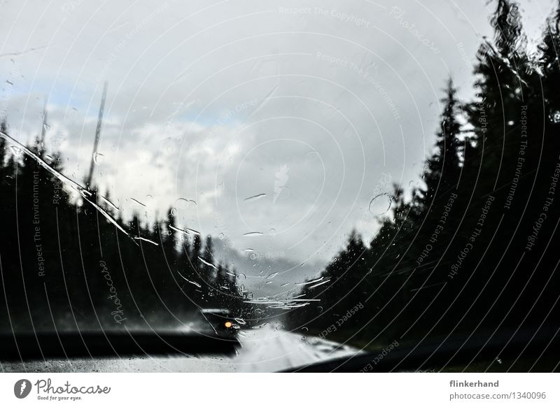 regentropfen, die an mein fenster klopfen Landschaft Regen Wald Straßenverkehr Autofahren Scheibenwischer PKW blau schwarz weiß Zukunft Wischen after the rain