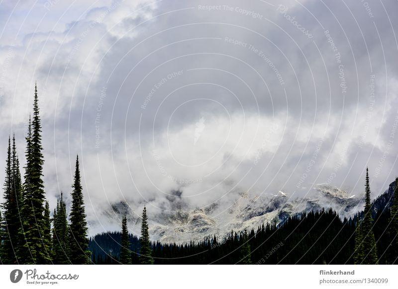 wolkenverhangen Natur Landschaft Klima schlechtes Wetter Nebel Berge u. Gebirge Gipfel Schneebedeckte Gipfel Kanada Rocky Mountains Nordamerika Ferne Wolken