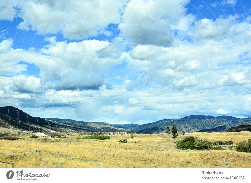 wild wild west Sand Himmel Wolken Schönes Wetter Hügel Wüste Steppe Ferne trocken blau braun grün Wilder Westen Farbfoto mehrfarbig Außenaufnahme Menschenleer
