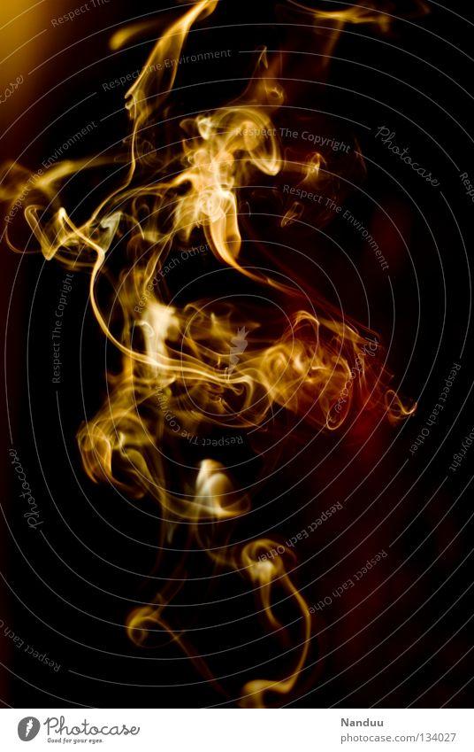 Ekstase rot gelb dunkel Wärme orange Hintergrundbild Wind Brand gefährlich Feuer bedrohlich Vergänglichkeit Romantik Dinge Idee Physik