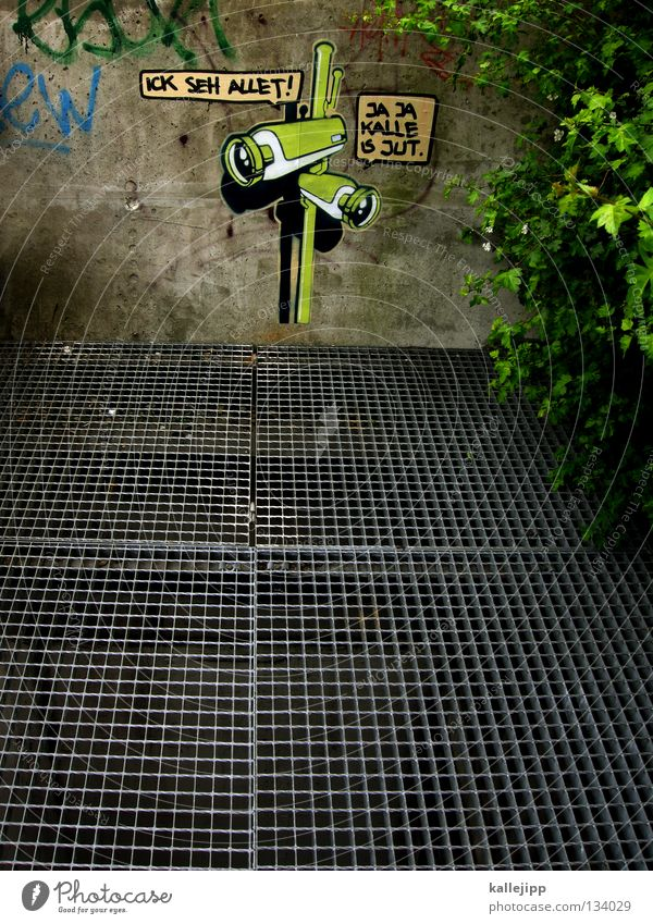 kalle? Stadt Sicherheit Graffiti Suche Wachstum Sträucher Fotokamera Amerika Straßenkunst Medien Politik & Staat Zweig Video Raster Linse Gitter