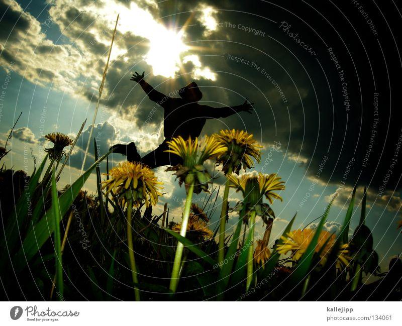 käferglück Mensch Mann Pflanze Sommer Sonne Landschaft Wolken Freude Gefühle Frühling Wiese Beleuchtung Bewegung Gras Tod Glück