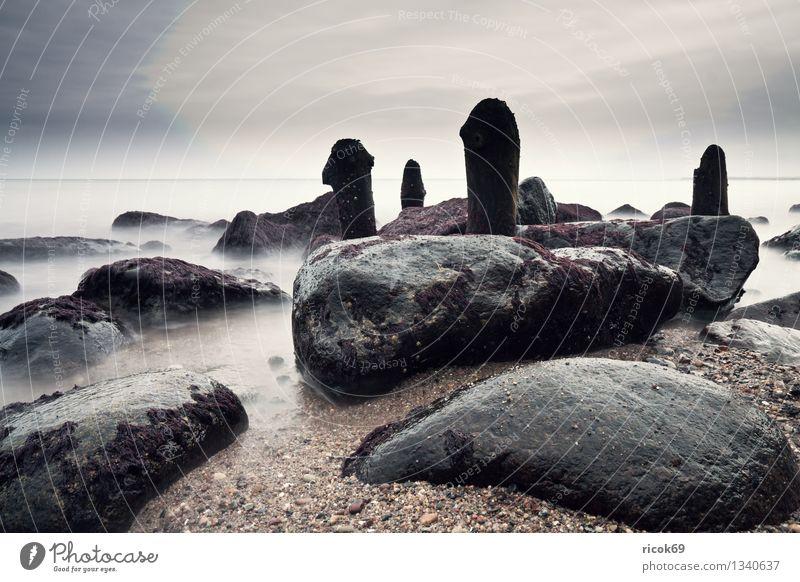 Ostseeküste Strand Natur Landschaft Wasser Wolken Felsen Küste Meer Stein Holz ruhig Buhne Heiligendamm Mecklenburg-Vorpommern Himmel steinig Farbfoto