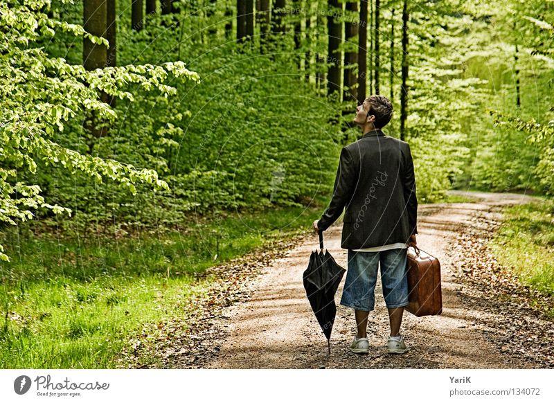 wo bin ich? Mann alt grün Baum ruhig Einsamkeit Wald oben Stein hell braun Beleuchtung gehen wandern Suche verrückt