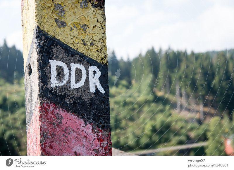 Geschichte - aus und vorbei Sommer Wald Nadelwald Beton Zeichen Schriftzeichen Schilder & Markierungen Hinweisschild Warnschild Grenzpfahl alt bedrohlich dunkel