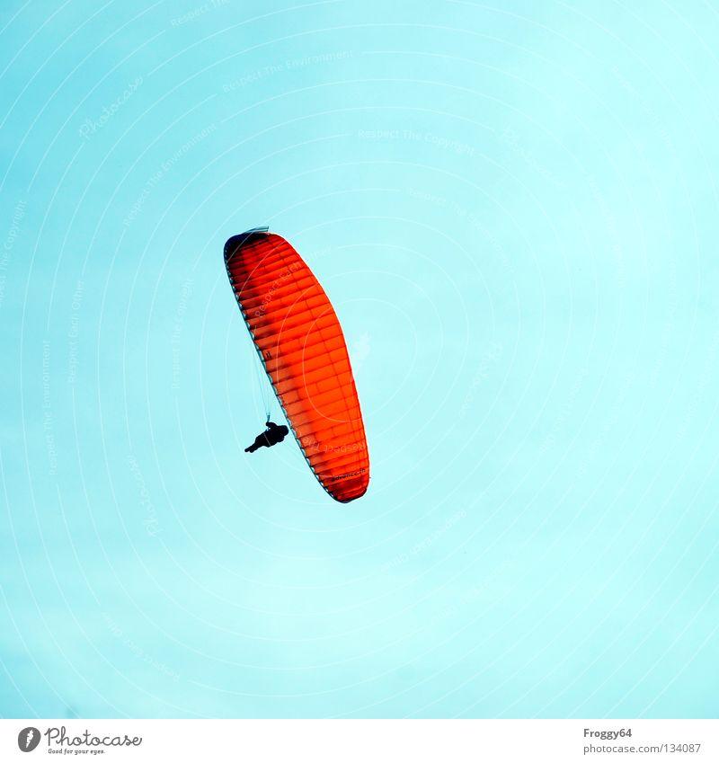 Hoch hinaus Himmel Sonne blau Freude schwarz Wolken Berge u. Gebirge Luft orange Vogel Wind Wetter fliegen Luftverkehr Freizeit & Hobby Pilot