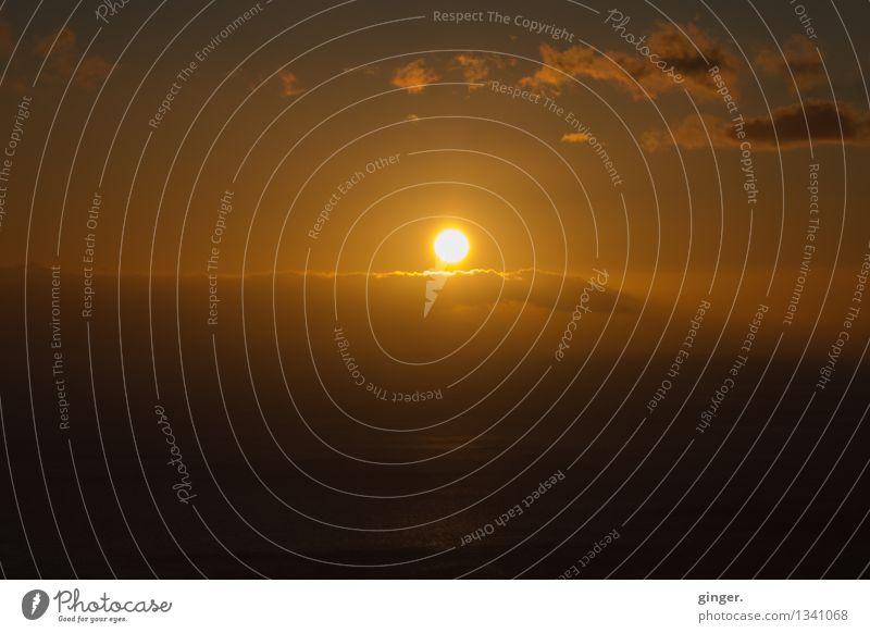 Sonnenaufgang Umwelt Himmel Wolken Horizont Sonnenuntergang Sonnenlicht Frühling Klima Wetter Schönes Wetter Meer La Palma Teneriffa Kanaren Wärme braun gelb