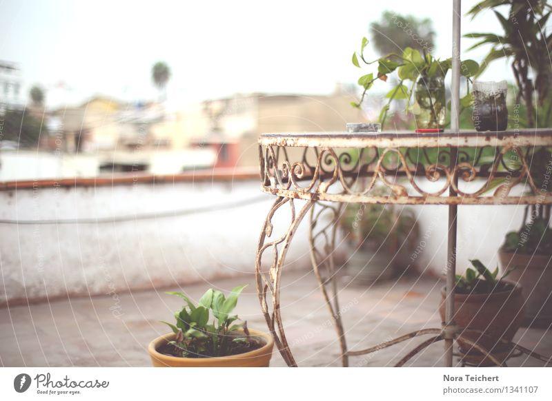 Lima rooftop. Himmel alt Pflanze Blume Erholung Haus Wand Mauer braun Fassade Dekoration & Verzierung sitzen ästhetisch Aussicht Tisch Dach