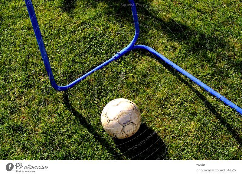 Tor? Fußball Stab Gras Rasen Sportrasen Treffer Leder grün rund Schatten Garten Leidenschaft ruhig treten Fußballplatz Europameisterschaft Defensive Ballsport