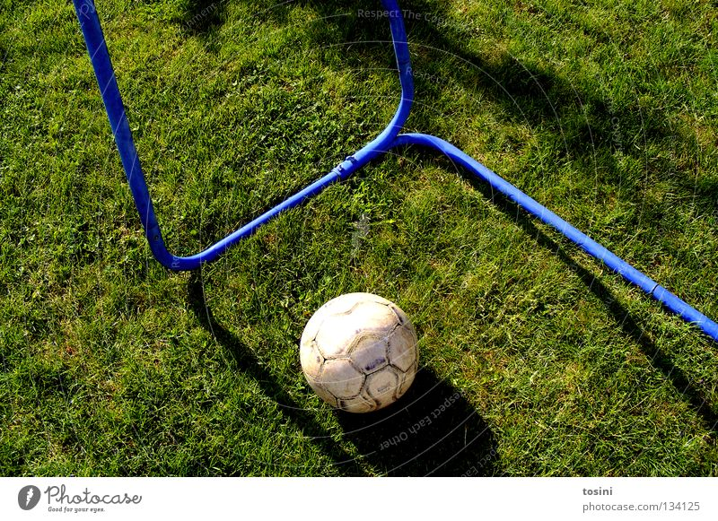 Tor? grün ruhig Sport Gras Garten Kindheit Fußball rund Rasen Sportrasen Leidenschaft Leder Treffer Stab