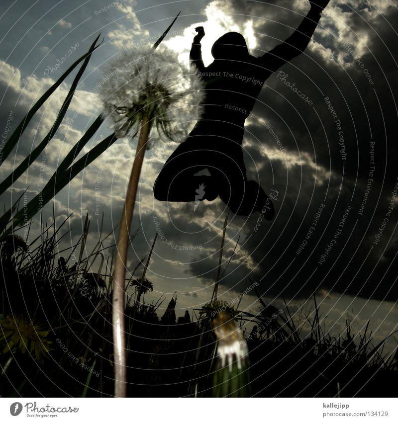 willi Gras Wiese Gefühle springen Reifezeit Wachstum Freizeit & Hobby gefährlich Gegenlicht Sprungkraft Froschperspektive Sonnenbad Sekte Götter