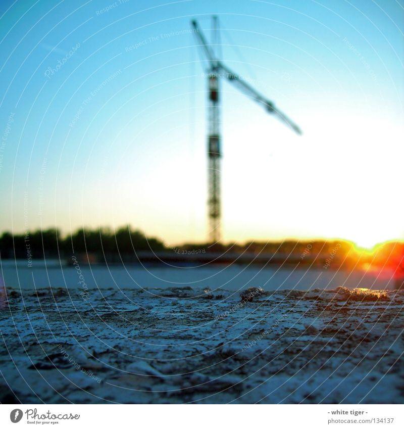 When the Sun goes down.. Himmel weiß grün Baum rot Sonne schwarz gelb grau Horizont Schönes Wetter Kran Textfreiraum Wolkenloser Himmel