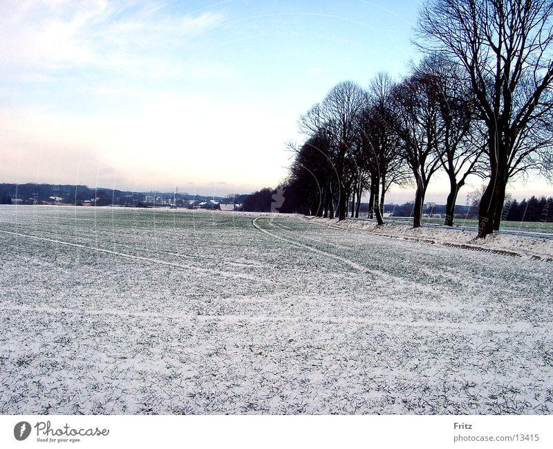 feld-im-winter Winter Schnee Feld