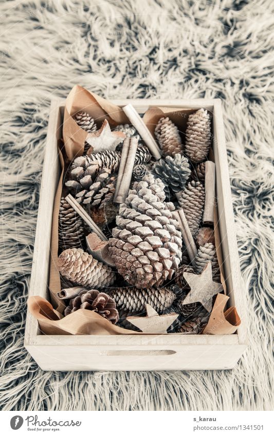 Weihnachtsdeko Weihnachten & Advent Winter natürlich Holz Feste & Feiern Häusliches Leben Dekoration & Verzierung Kreativität Warmherzigkeit Jahreszeiten Decke kuschlig verschönern selbstgemacht Tannenzapfen
