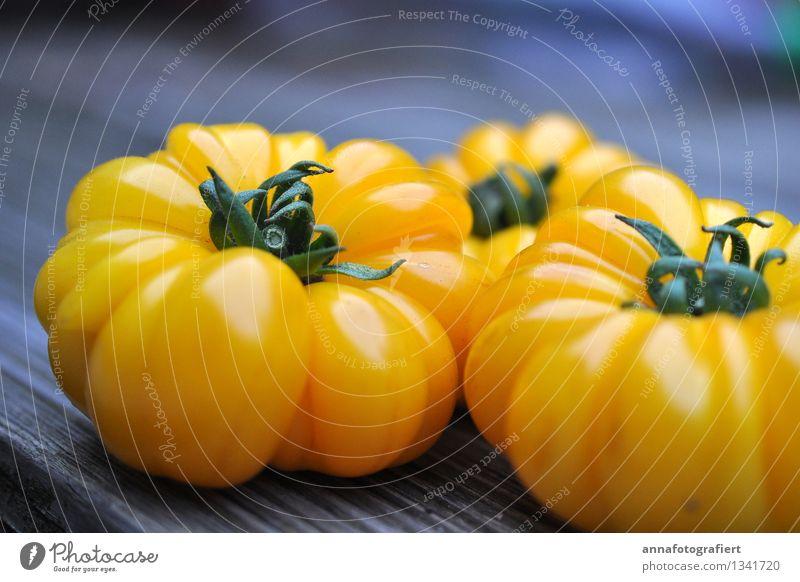 Gelbe Tomaten Natur Sommer gelb frisch Ernte Gartenarbeit Erntedankfest