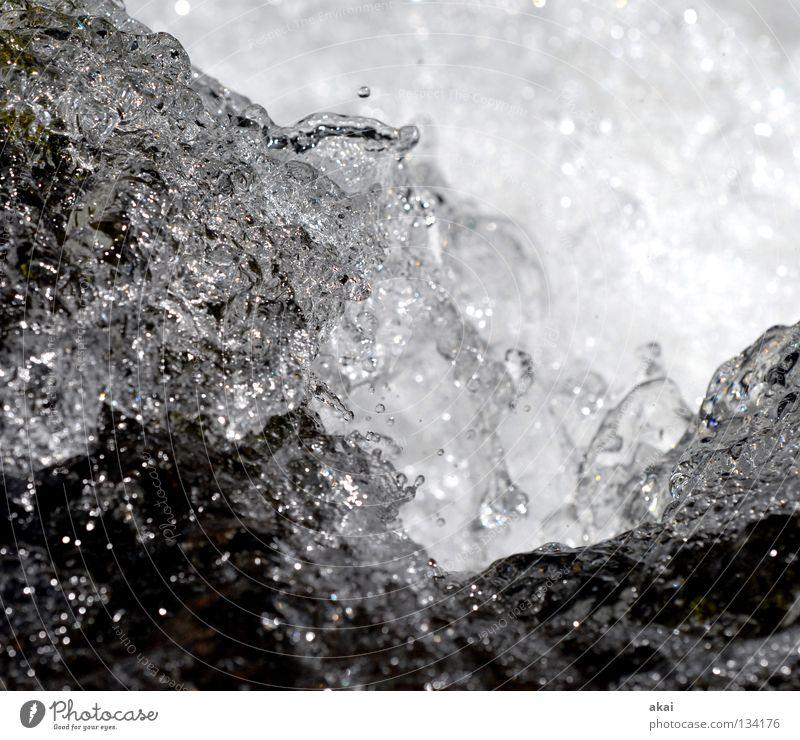 Nass Wildbach Bach spritzig Gischt kalt Reflexion & Spiegelung Fluss Wasser Wasserfall spritzen Schwarzweißfoto Wassertropfen Wasserspritzer Nahaufnahme