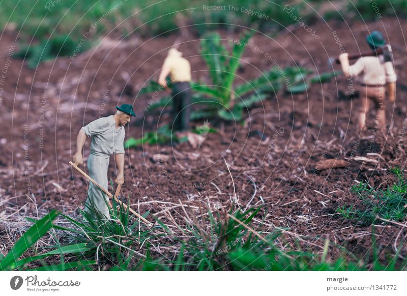 Miniwelten - Gartenarbeit II Mensch Natur Pflanze grün Blatt Gras braun Arbeit & Erwerbstätigkeit maskulin Feld Erde Körper Landwirtschaft Figur