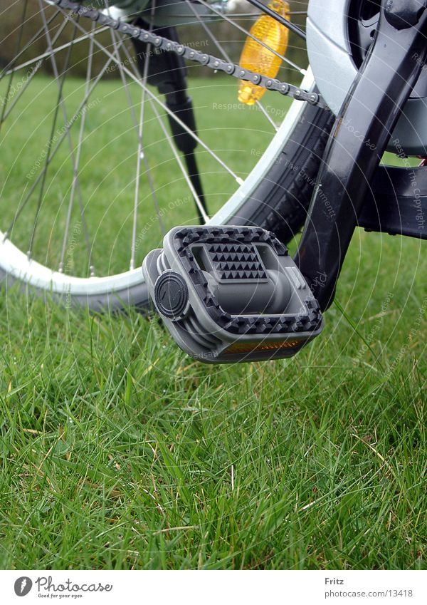 beck-motiv-29 Sommer Fahrrad Verkehr Ausflug Pedal