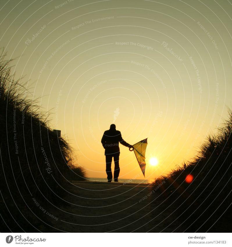 DRACHENREITER Küste Strand Sonnenuntergang Gegenlicht Gras Sträucher Lenkdrachen mehrfarbig See Meer Mann maskulin Kerl Blendeneffekt blenden Freizeit & Hobby
