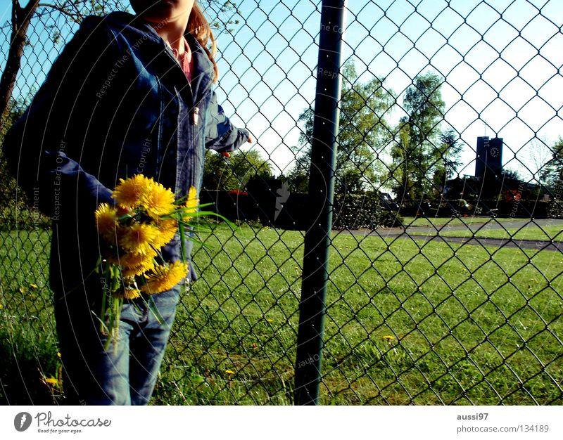 Für dich gepflückt Natur Blume Sommer Wiese Gras klein Trauer Spaziergang Freizeit & Hobby fangen festhalten Verzweiflung