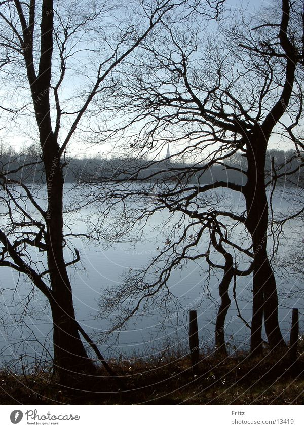 beck-motiv-28 Wasser Baum Herbst See