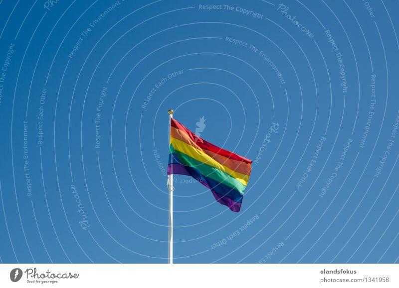 Regenbogenfahne Freiheit Sonne Homosexualität Himmel Wind Fahne hell blau gelb grün rot hell erleuchtet zivile Partnerschaft farbenfroh schwuler Stolz
