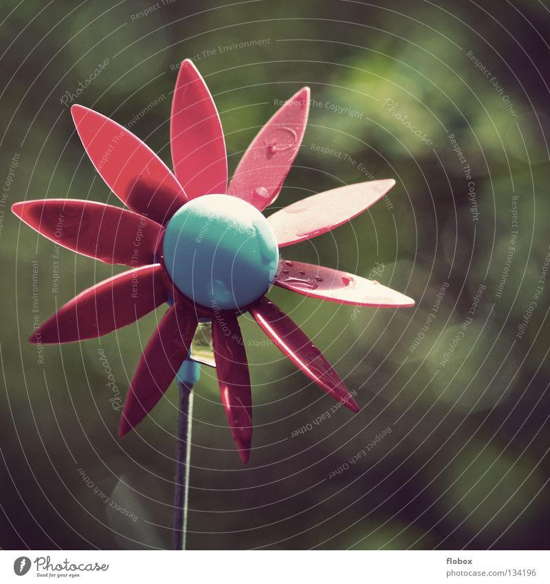 Dreh Rädchen, dreh! Windrad Spielzeug Spielen Dekoration & Verzierung drehen Sturm Leidenschaft Bewegung mehrfarbig Elektrizität Kunst Garten Park Makroaufnahme