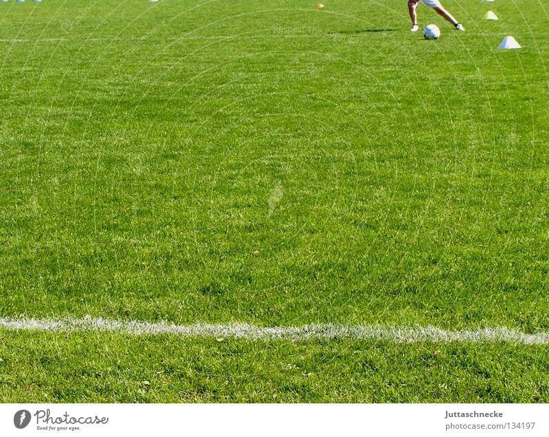 Stürmer grün Freude Sport Linie Fußball Erfolg Ball Rasen Eckstoß Sport-Training sportlich einzeln Fußballplatz Defensive Ballsport Finale