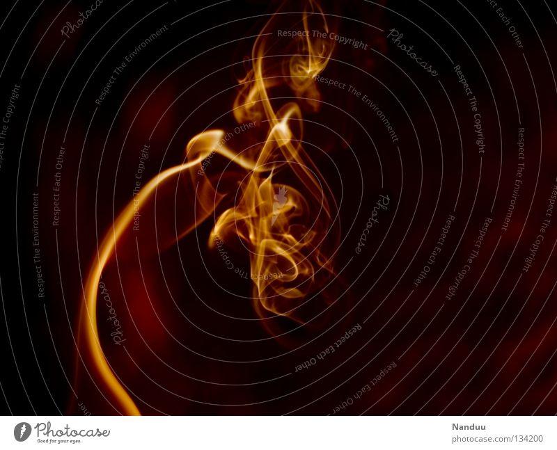 Sinnlichkeit Räucherstäbchen Physik Flirten Leidenschaft taumeln gefährlich dunkel rot gelb Zärtlichkeiten Romantik Höhepunkt zerbrechlich Vergänglichkeit